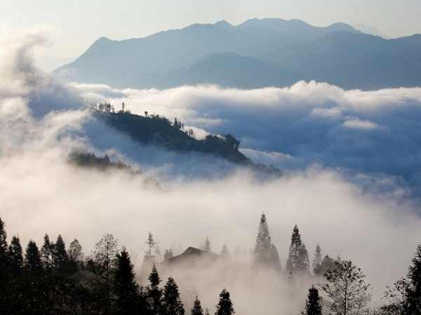 Giải mã giấc mơ thấy sương mù là điềm báo điều gì?